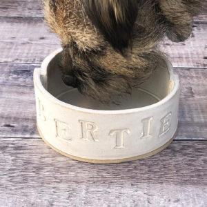 Personalised Dog Bowl